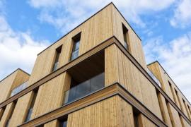 Hälften av alla hus byggs i trä inom tio år