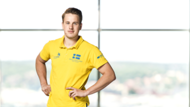 Svenska medaljer i Yrkes-EM