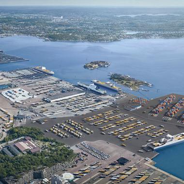 Göteborgs Hamn återplanterar ålgräs