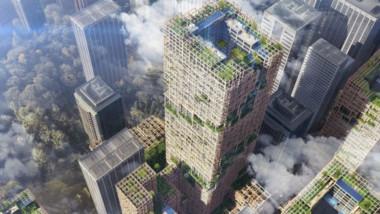 Här byggs världens högsta skyskrapa i trä